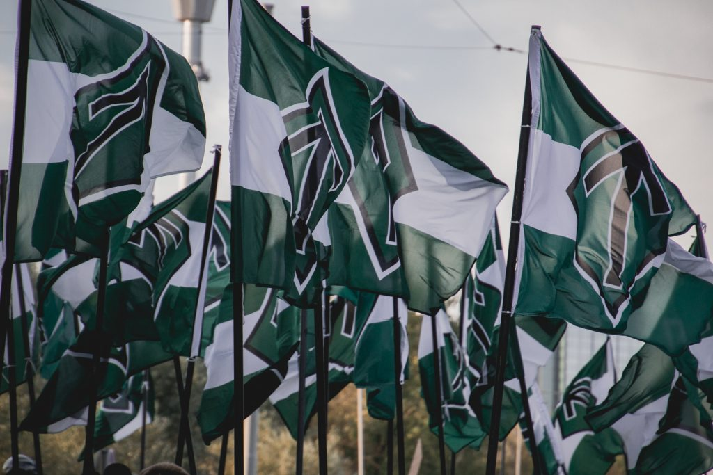 Nordic Resistance Movement flags