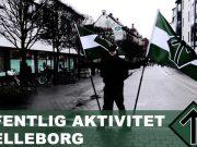 Video: Nordic Resistance Movement members leaflet in Trelleborg, Sweden