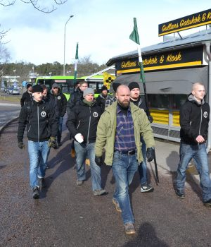 Nest 8 Nordic Resistance Movement activists visit Nyköping