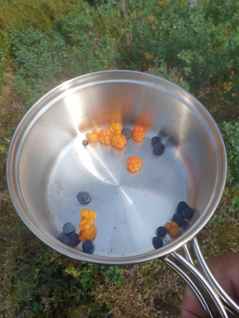 Cloudberries and blueberries