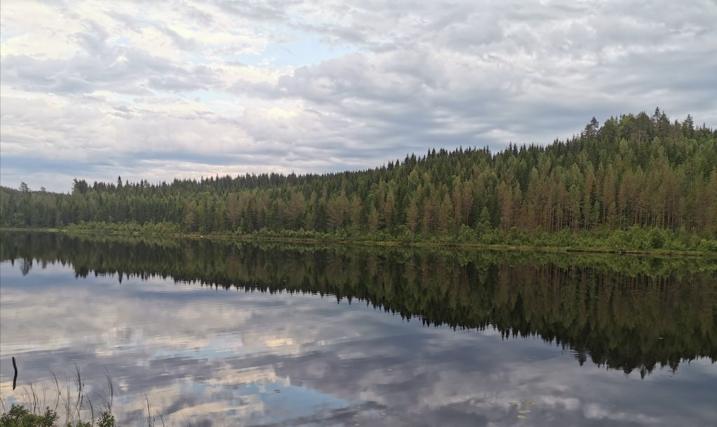 Lake in Värmland, Sweden