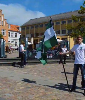 Nordic Resistance Movement activism, Viborg, Denmark