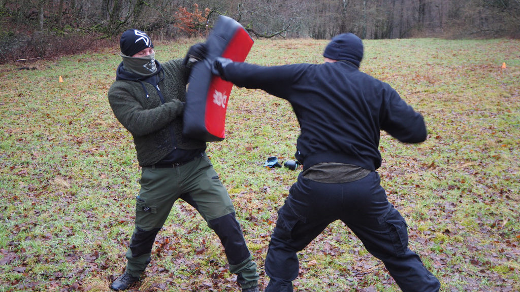 Nest 3 martial arts training