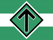 Nordic Resistance Movement flag