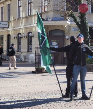 Nordic Resistance Movement public activity in Karlskrona, Sweden