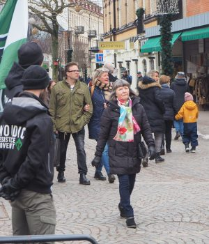 Nordic Resistance Movement public activity in Ängelholm