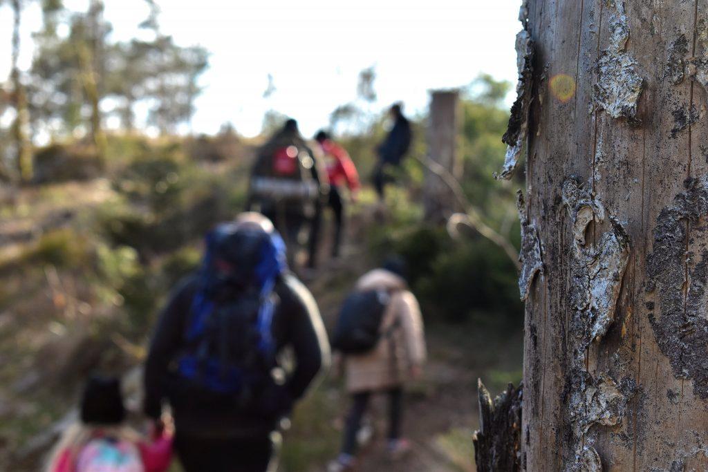 NRM hike in Sweden's Nest 2