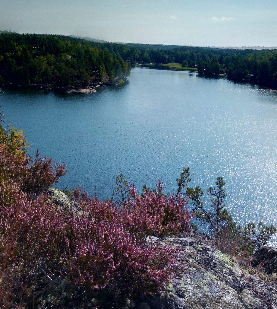Nest 8 Swedish lake scenery