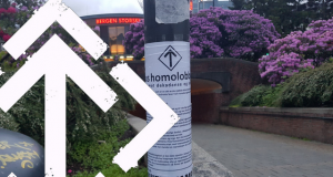NRM campaign against the homo lobby in Bergen, Norway