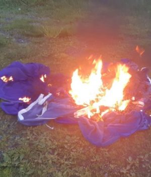 Burning EU flags