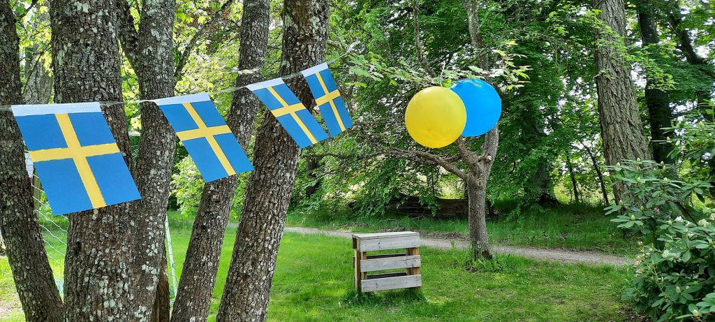 Bunting flags and balloons at NRM Swedish National Day celebration