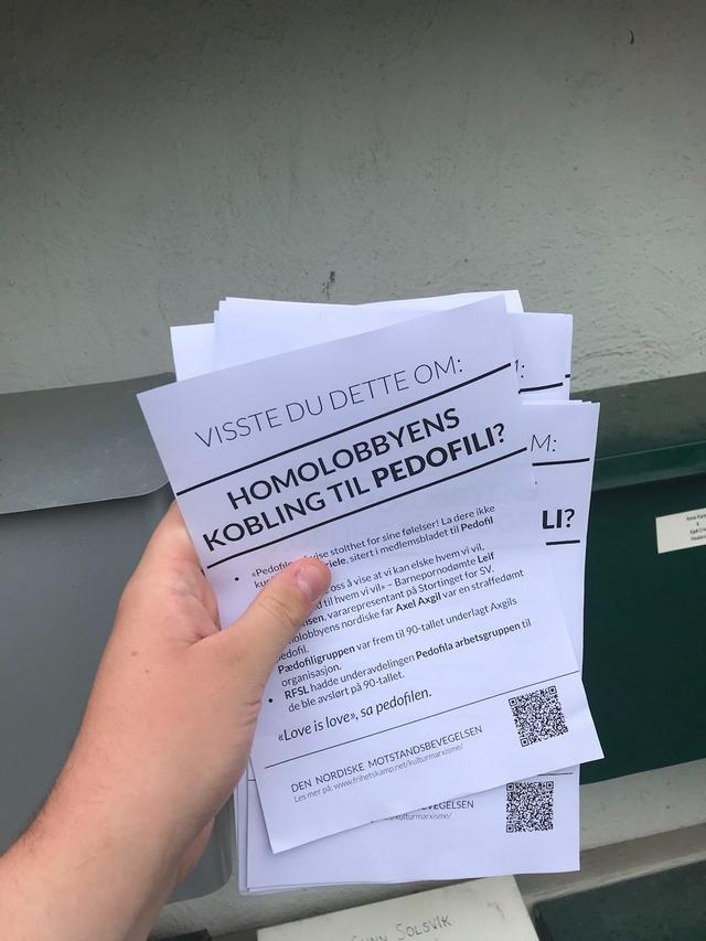 Homo lobby paedophilia leaflets