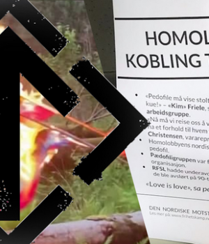 Activism against the homo lobby in Norway