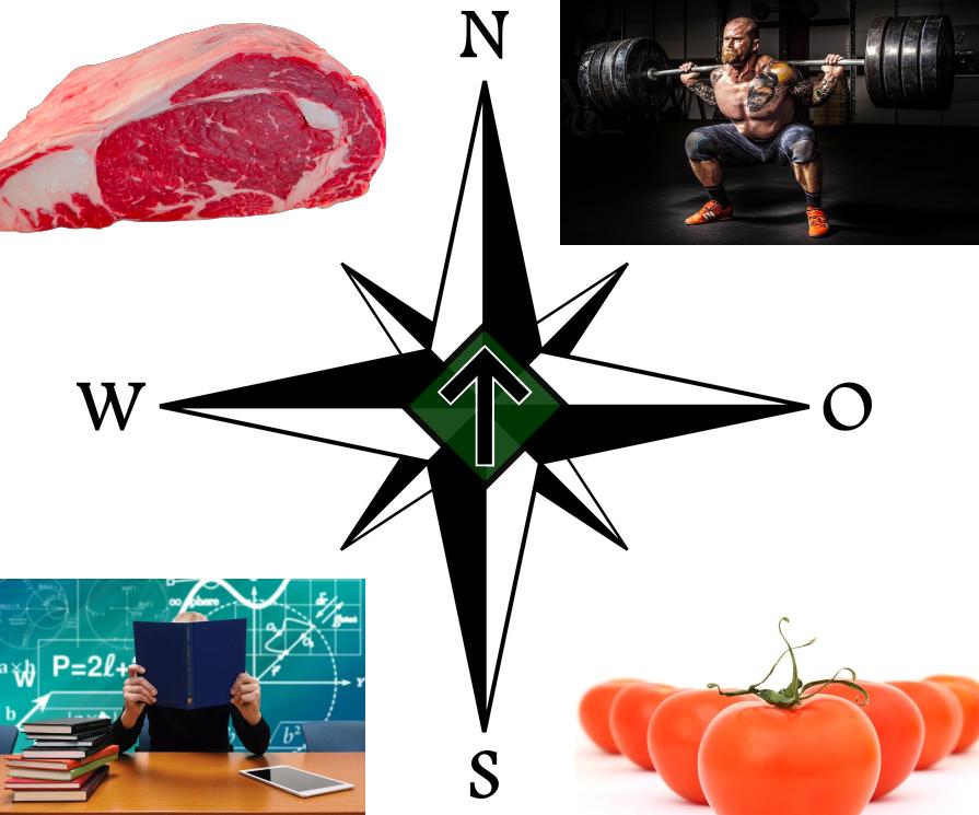 Healthly lifestyle compass