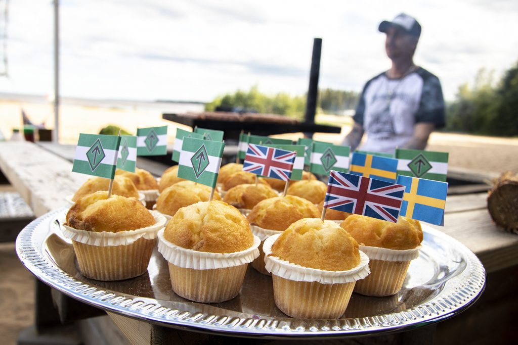 Fairy cakes on Sweden's National Day