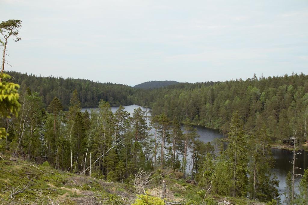 Wilderness camping, Eastern Norway