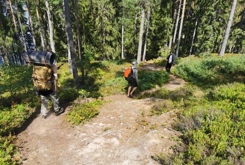 Hiking on the Brattforsleden trail, Sweden