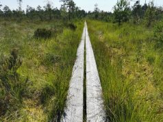 Brattforsleden trail, Sweden